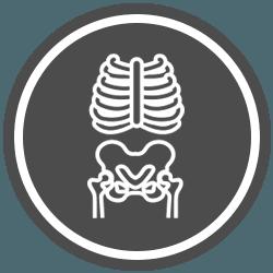Chiropractic Golden MS X-Ray